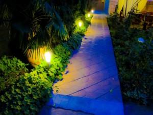 Лятна градина в ресторант Мира -03